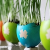 DIY Easter Egg Planters