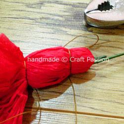 tissue carnation WIP10