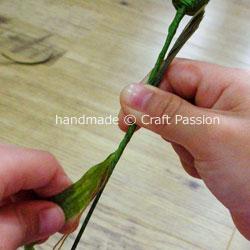 tissue carnation WIP12