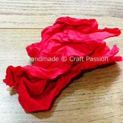 tissue carnation WIP4