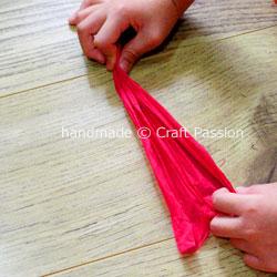 tissue carnation WIP5