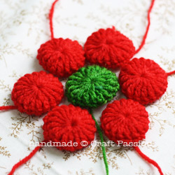 Crochet Poinsettia