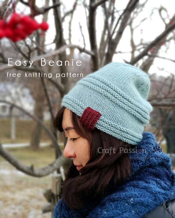Easy Beanie Pattern - Men & Women - Free Knit Pattern | Craft Passion