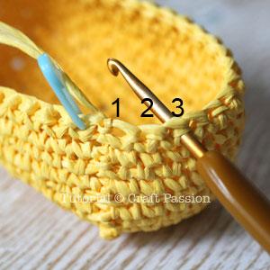 crochet rcp 9