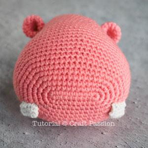 ami hippo 15