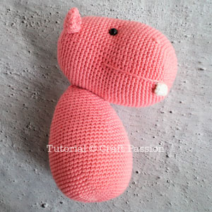 ami hippo 19