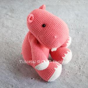 ami hippo 21