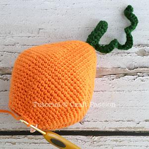ami pumpkin 4