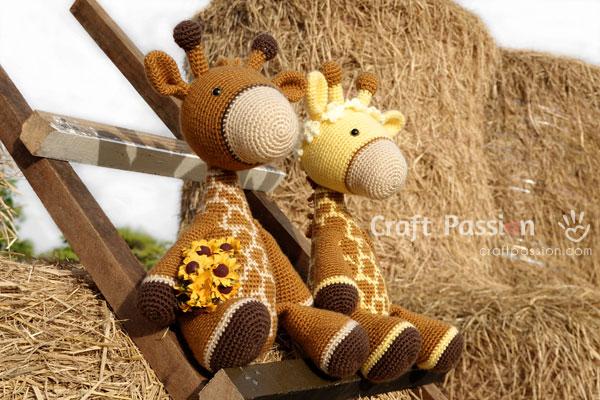 padi field giraffe