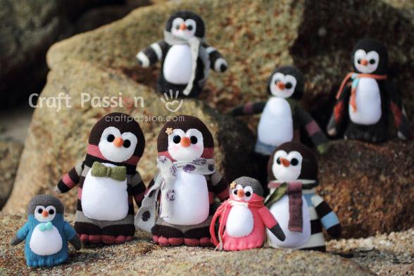 sock penguin group photo