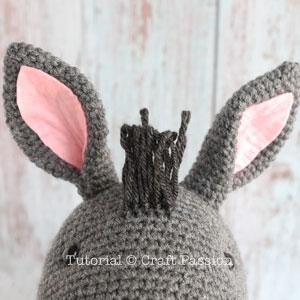 donkey mane 5