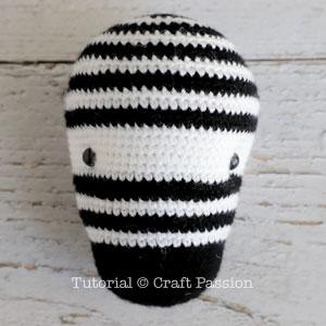 zebra eye 1